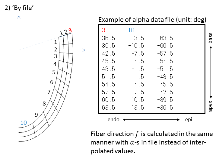 Format of alpha data files and the heart geometry