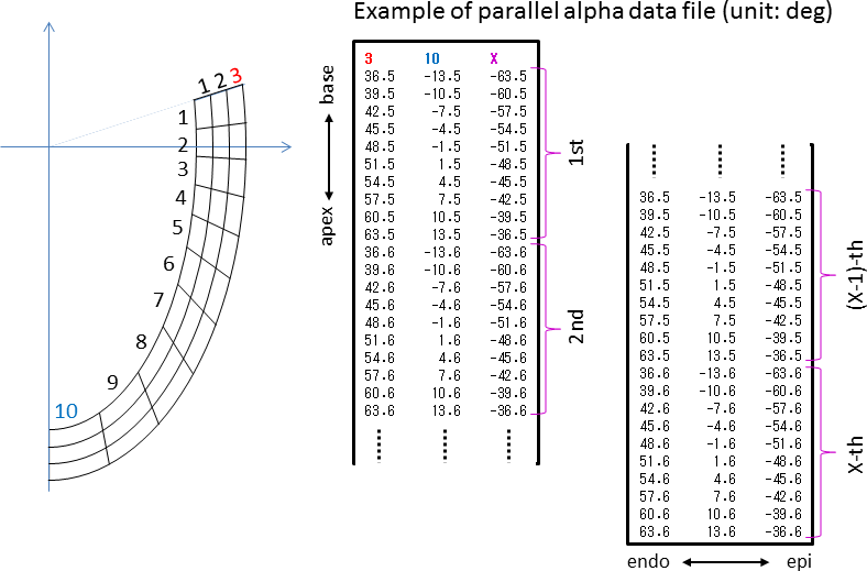 Format of parallel alpha data files and the heart geometry
